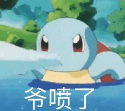 杰尼龟带字憨憨表情包