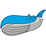宝可梦剑盾吼鲸王攻略