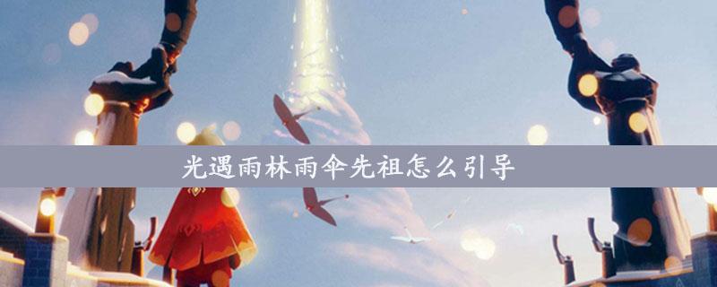 光遇雨林雨伞先祖怎么引导